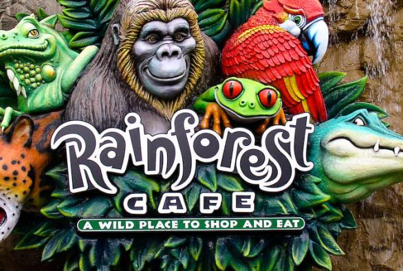 Coupons For Rainforest Cafe Mall Of America